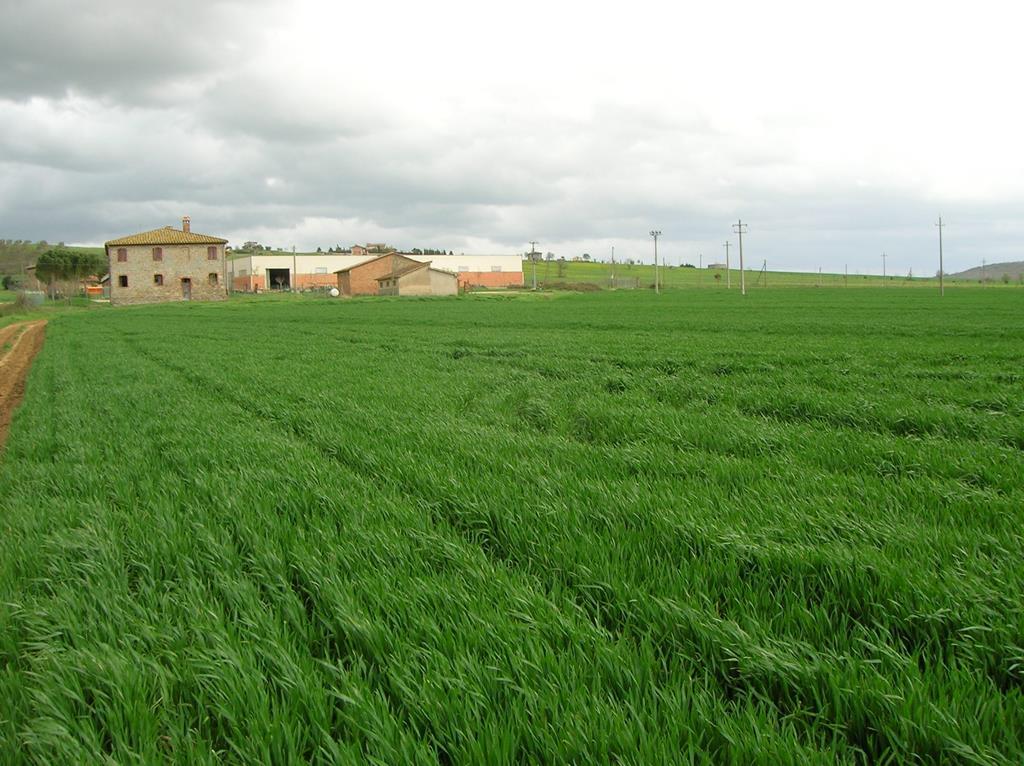 Centro aziendale di Mugnano